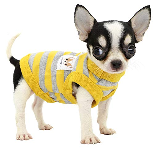 Top 10 Xxs Puppy Clothes of 2021