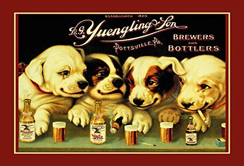 Top 10 Yuengling Sign of 2021